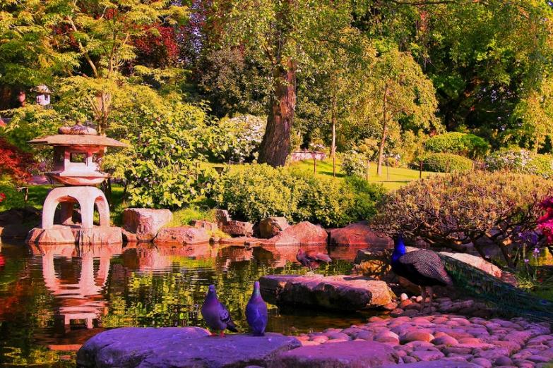 Традиционный парк в Киото