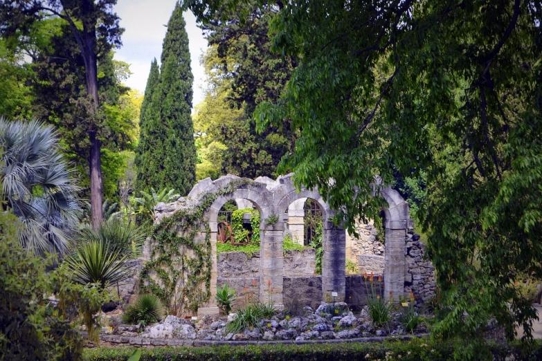 Ботанический сад в Монпелье