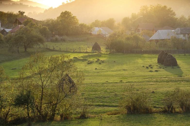 Утро в сельской глубинке