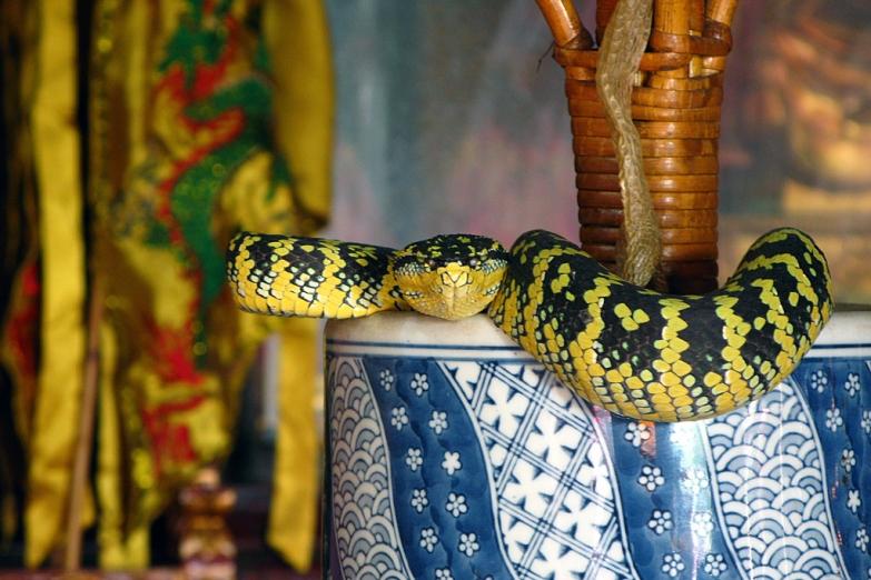 Змеиный храм