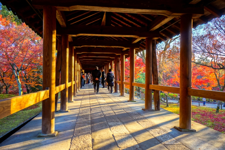 В храме Тофуку-дзи