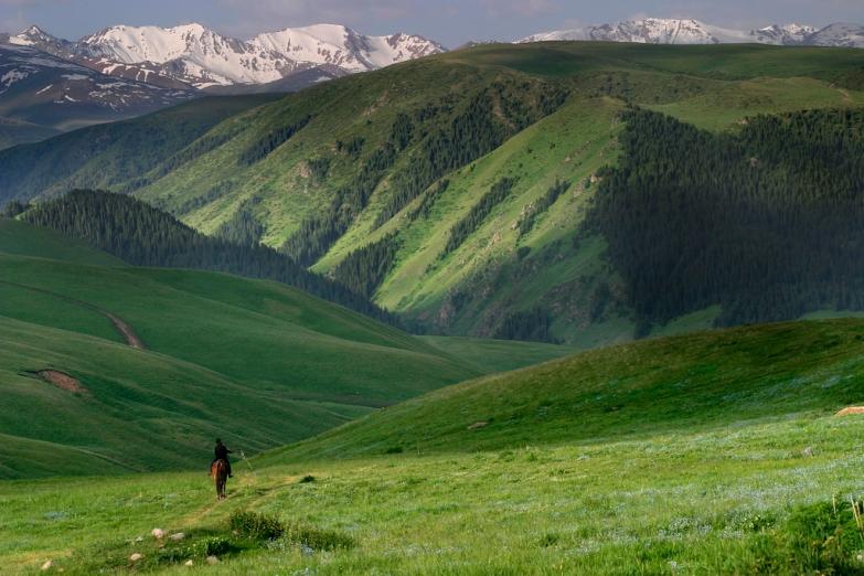 Пастух на высокогорном лугу