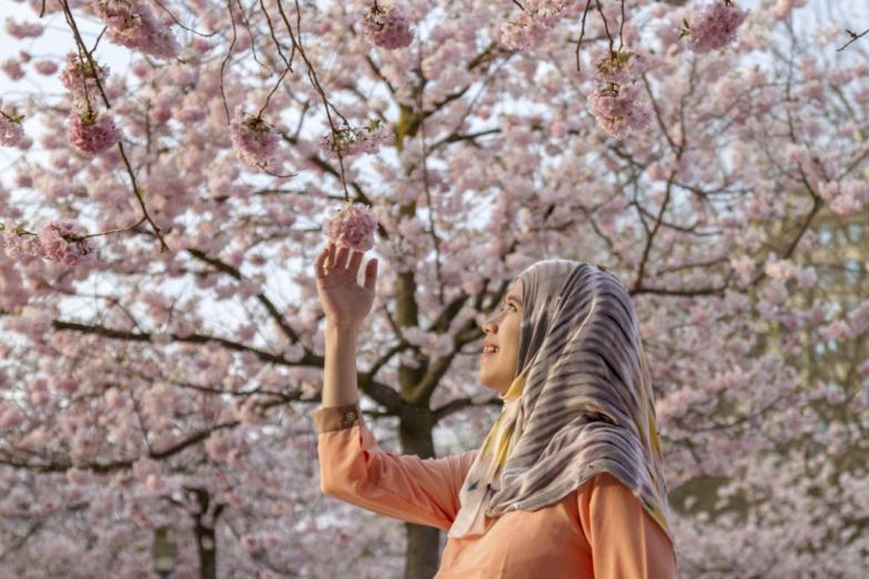 Мусульманская красавица в цветущем саду