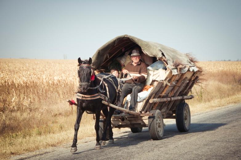 Главный транспорт в сельской местности