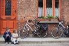 Велосипеды - основной транспорт в Брюгге