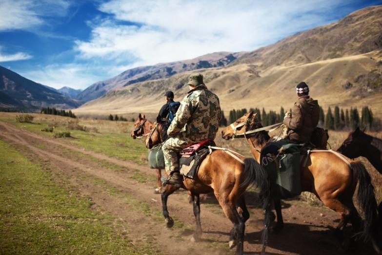 Пастухи едут на пастбище в степи