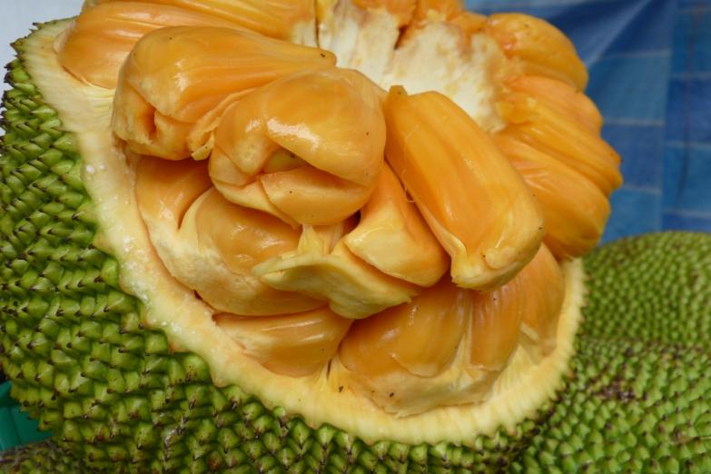 Сочный плод Джекфрута