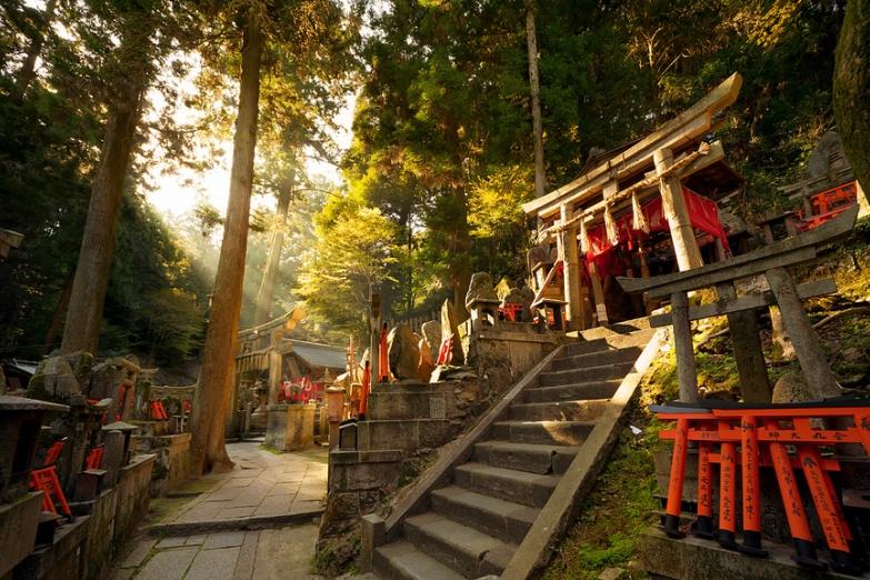 Священная роща храма Фусими-Инари