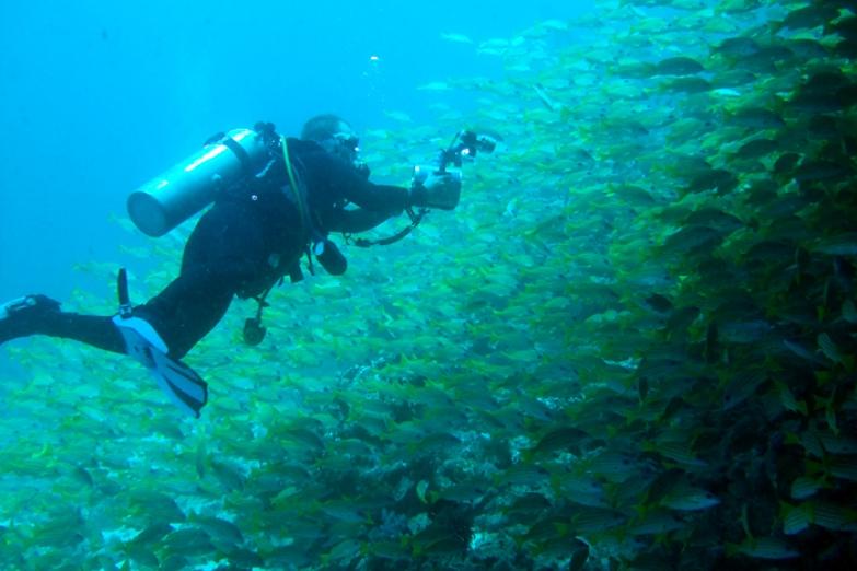 Подводная сокровищница