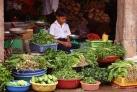 Юный торговец в окружении зеленых товаров