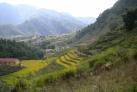 Рисовые террасы Сапы