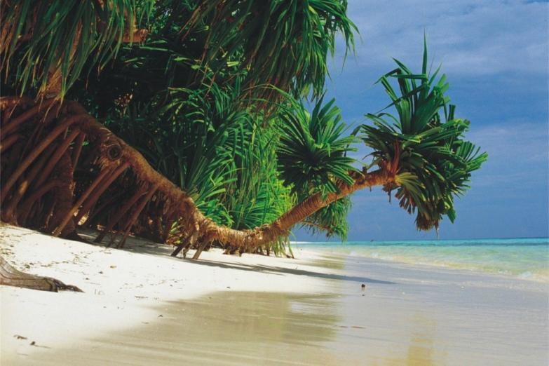 Типичный пляж на Мальдивах