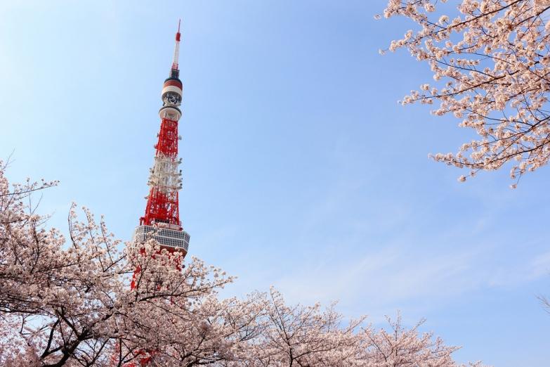 Токийская телебаншня весной
