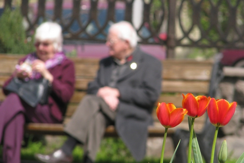 Ветераны в парке