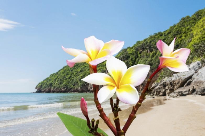 Прекрасные пляжи Малайзии