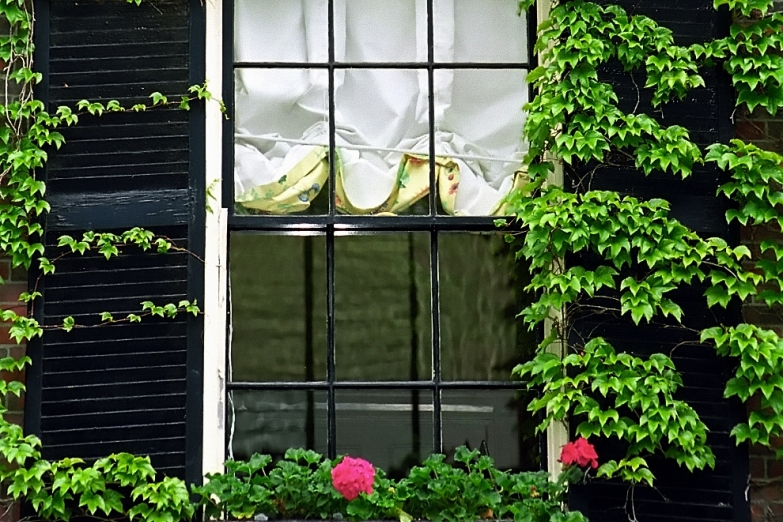 Окно дома в районе Бикон-хилл