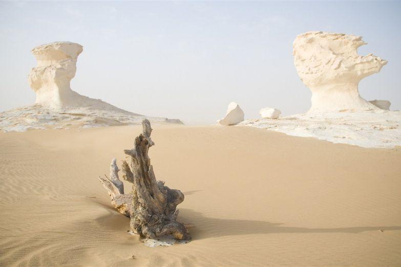 Пейзаж пустыни