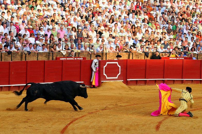 Арена для боя быков