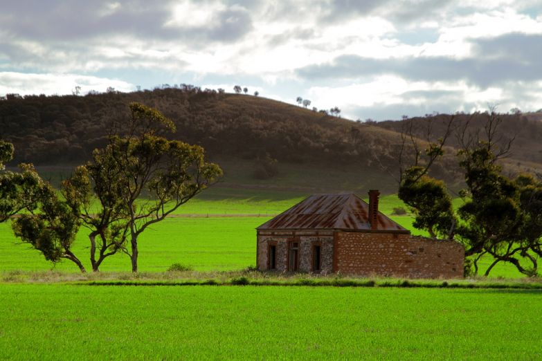 Зеленая долина в Австралии