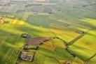 Залитые солнцем поля