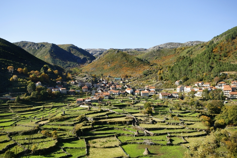 Поля и холмы острова Мадейра