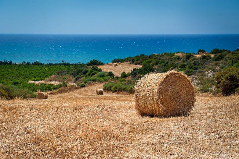 Типичный кипрский пейзаж
