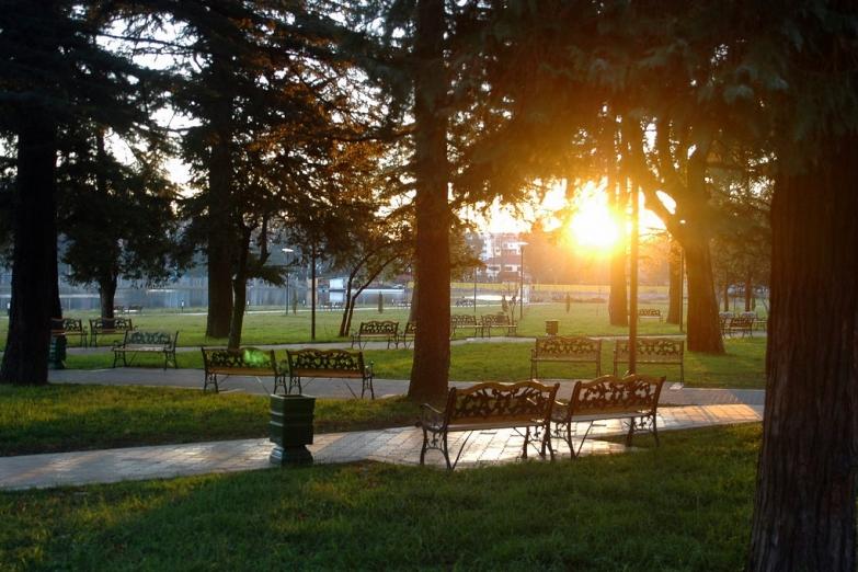 Утро в парке Батуми