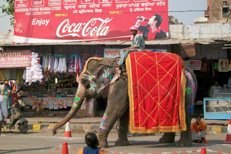 Слон в Амристаре