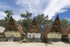 Дома племени Батак