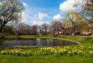 Весна в Дрездене