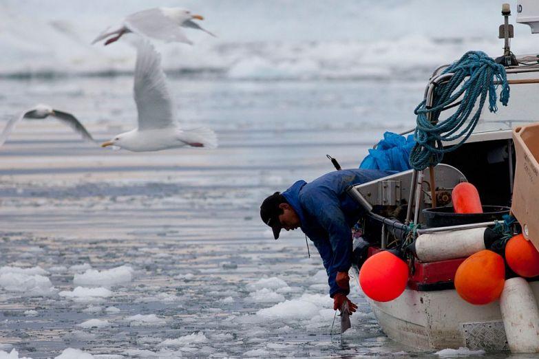 Рыбалка - основной промысел жителей Гренландии