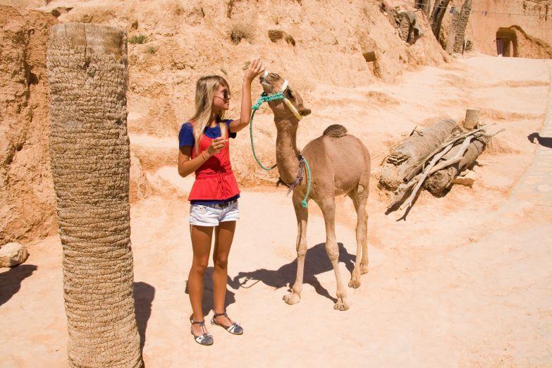 Девушка кормит верблюжонка