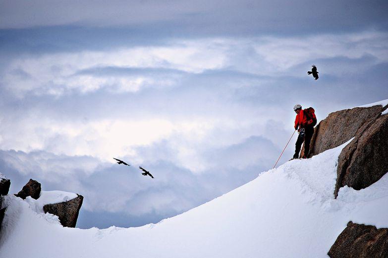 Покоритель Альп