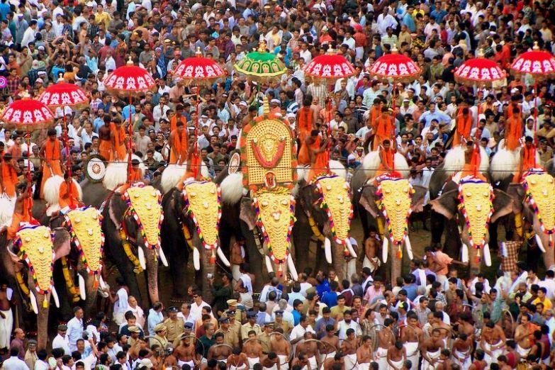 Фестиваль слонов  Триссур Пурам в городе Триссур
