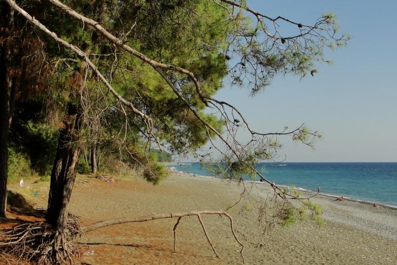 Дальний пляж в Пицунде
