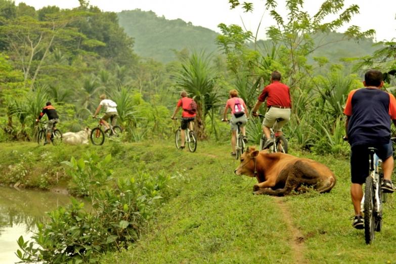 Вело-экскурсия в окрестностях Боробудура