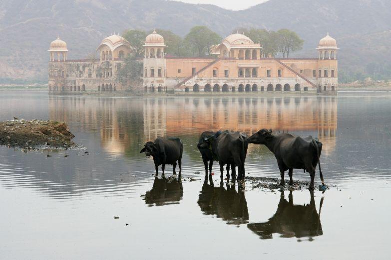 Водный дворец в Джайпуре