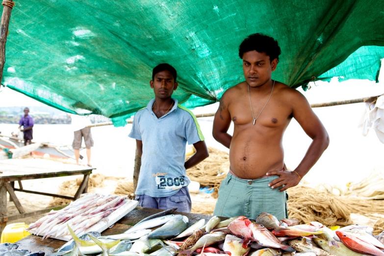 Рыбный рынок Галле