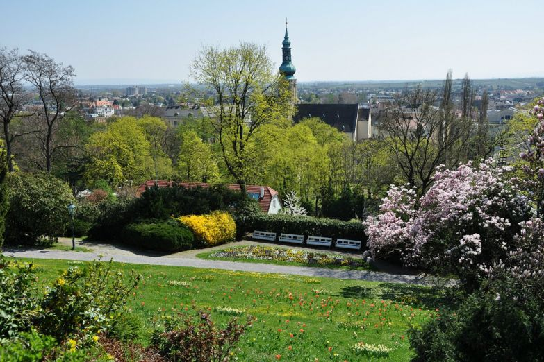 Природа в Бадене