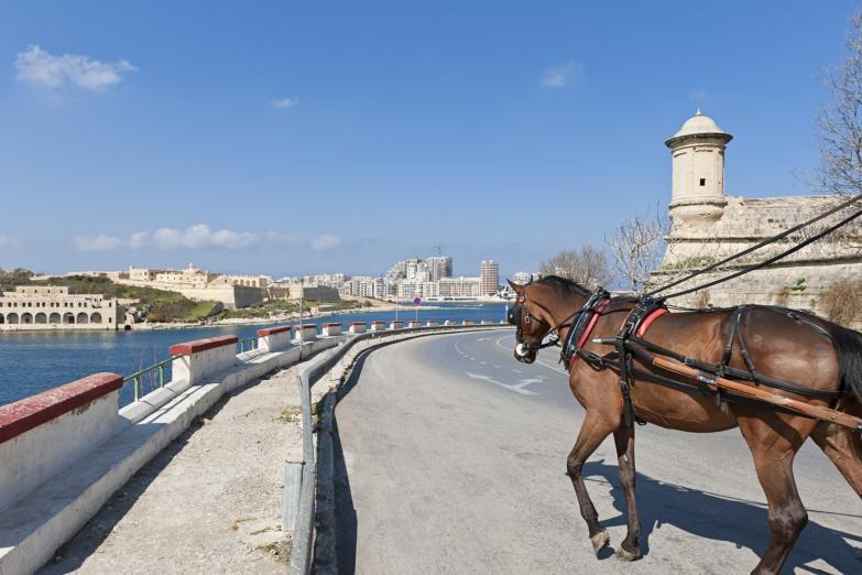 По столице Мальты на традиционной повозке карроцин