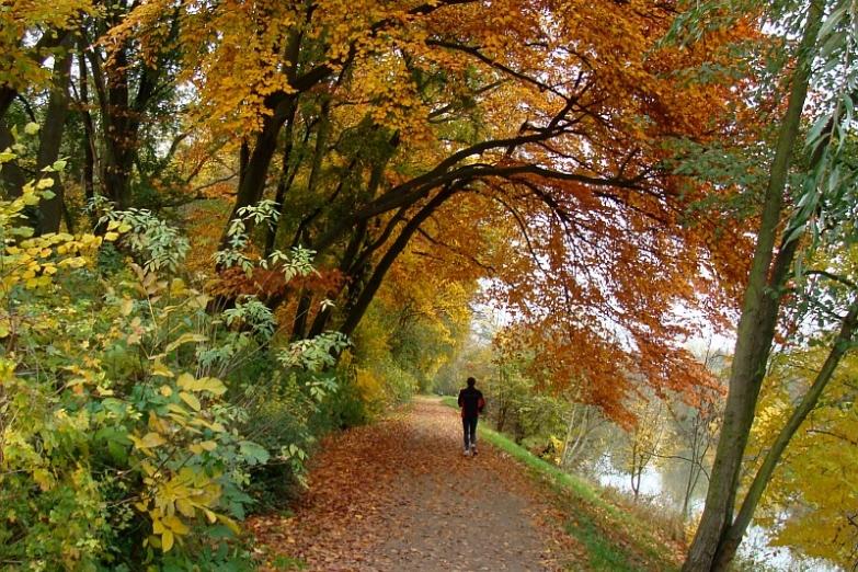 Осень в Ниддапарке