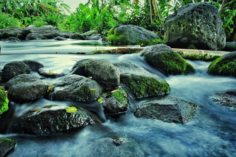 Река в джунглях близ города Клатен
