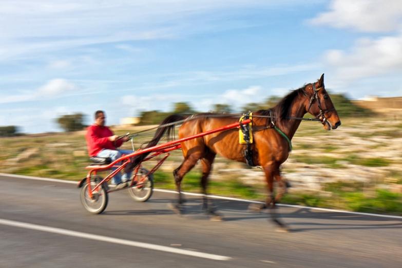 Конная повозка - не редкость на мальтийских дорогах