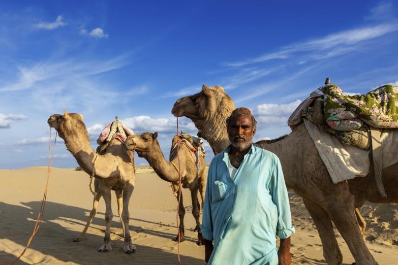Погонщик верблюдов в пустыне Тар