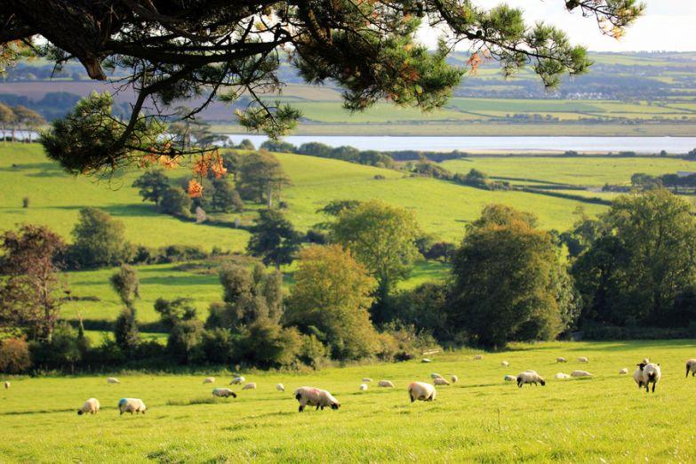Деревенская Англия