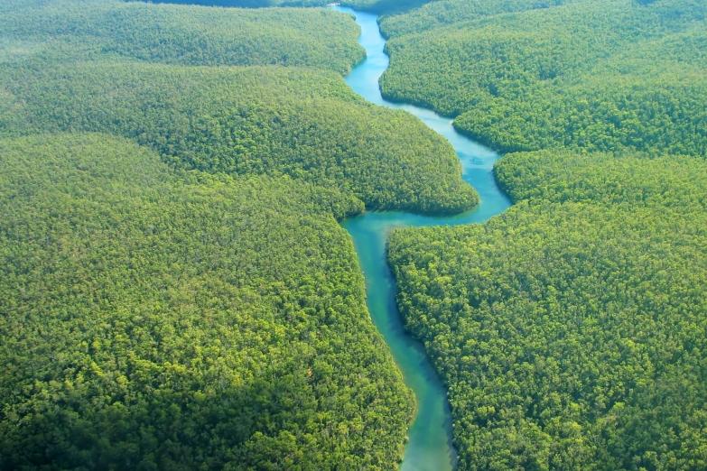 Долина Амазонии