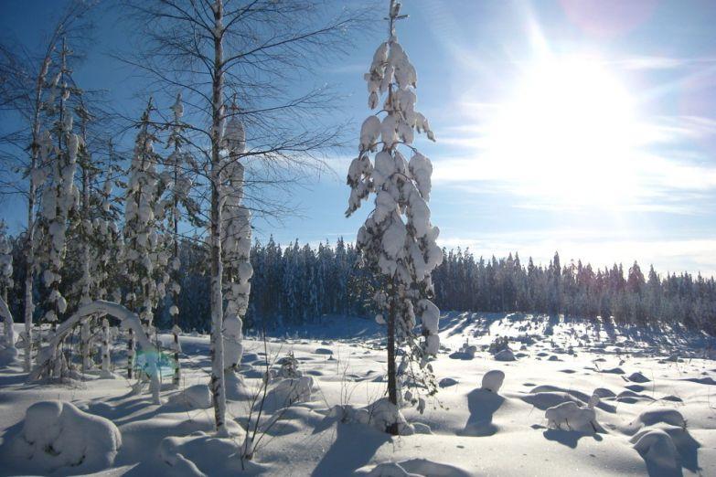 Зима в Финляндии