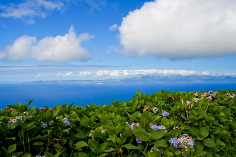 Потрясающие горзионты Азорских островов