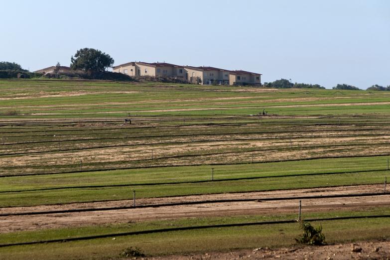 Ферма в окрестностях Нетании