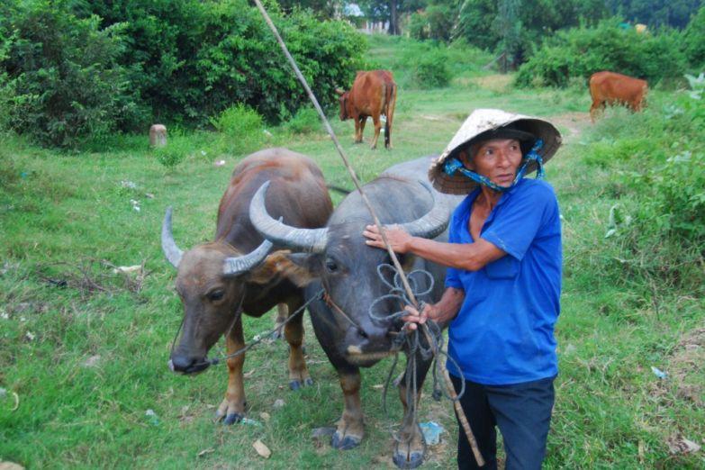 Местный фермер